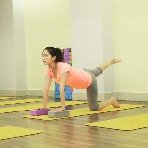 Gạch tập yoga 1