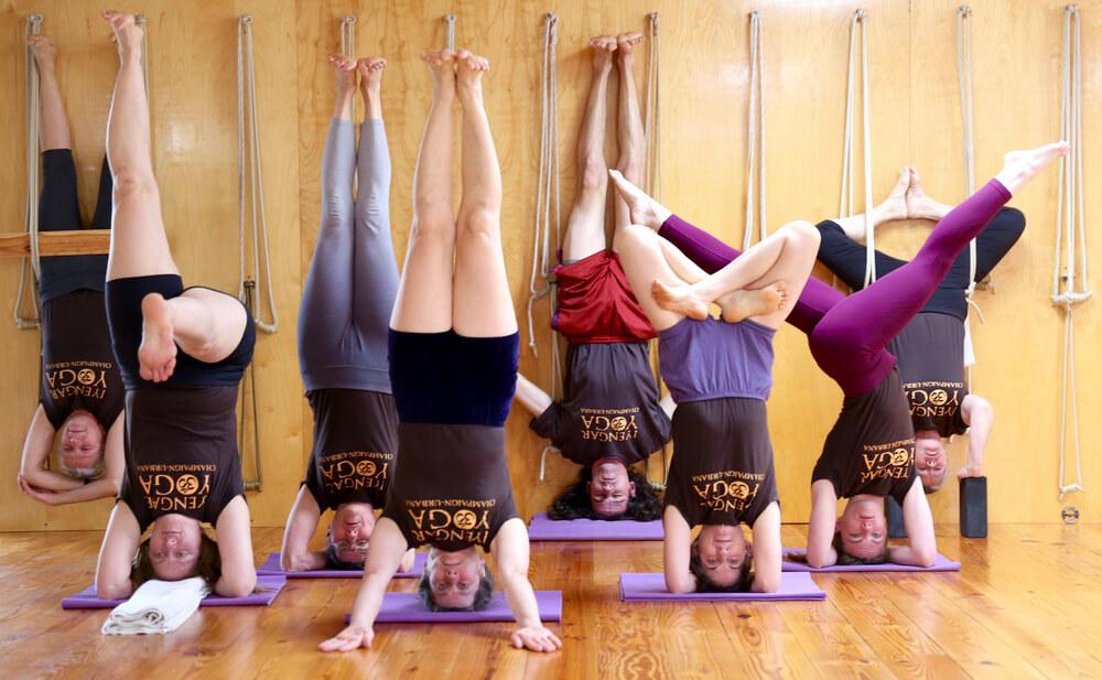 Loại hình Iyengar Yoga có phù hợp với bạn?