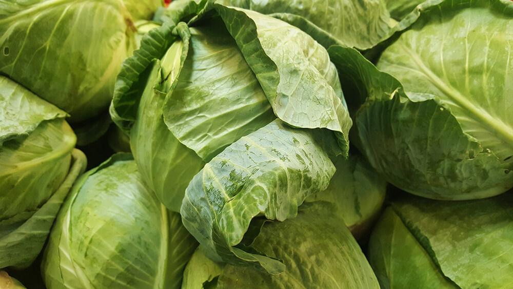 Bắp cải giúp bạn tăng cường hệ miễn dịch