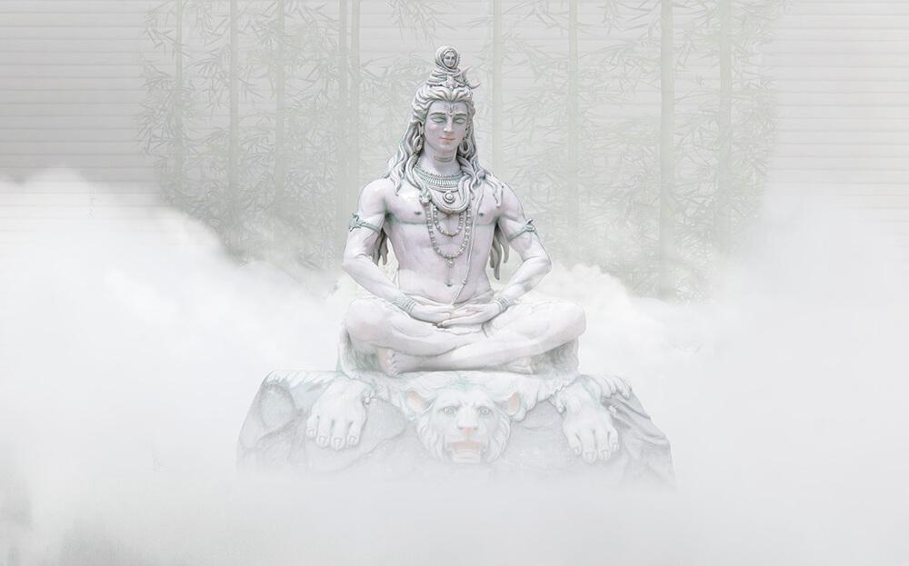 Sự khác biệt giữa Thiền và Chánh niệm là gì?